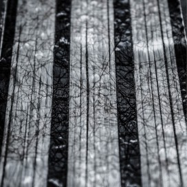 Bande de renfort web fused S-Glass + 4x2 strands 3K carbon, 66mm